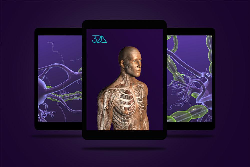 3DAnatomica Applications, interactive